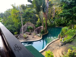 Pool at jungle retreat