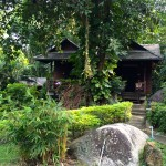 The Jungle Spa Samui- my bungalow
